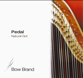 Bow Brand C2 - Gut
